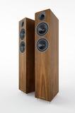 Acoustic EnergyAE309Walnut vinyl veneer