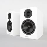 Acoustic EnergyAE300Piano Gloss White
