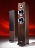 Acoustic EnergyAegis Neo Three V2Vermont